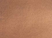 Bronze Metallic Leather